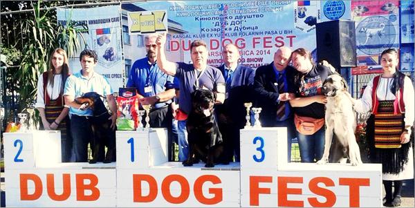 Alija 12 Dub Dog Fest