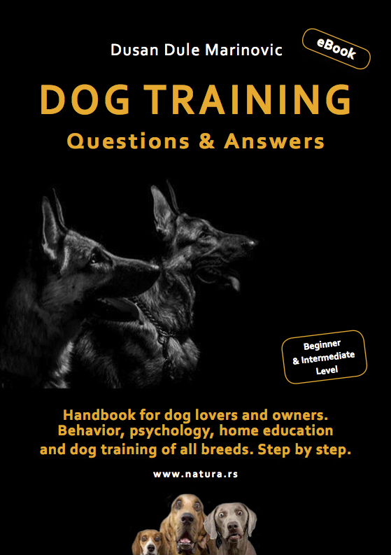 English Dog Training eBook velika