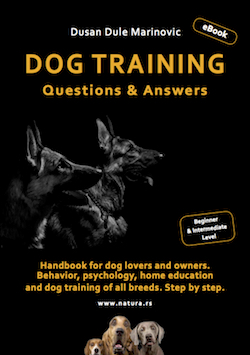 SOON: a famous eBook by Dusan Dule Marinovic titled DOG TRAINING - QUESTIONS & ANSWERS in ENGLISH. USKORO: poznata digitalna knjiga Dušana Marinovića DRESURA PASA - PITANJA & ODGOVORI i na ENGLESKOM.